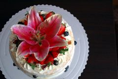 Urodzinowy tort dla mój 26 Obrazy Royalty Free