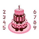 Urodzinowy tort z świeczek menchiami dla dziewczyn Ilustracja Wektor