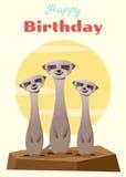 Urodziny i zaproszenia karciany zwierzęcy tło z meerkat Zdjęcia Stock