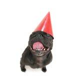 urodziny szczęśliwy zdjęcia stock