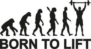 Urodzony podnosić weightlifter ewolucję ilustracja wektor