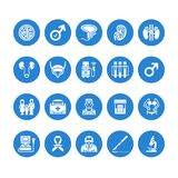 Urology vector flat glyph icons. Urologist, bladder, kidneys, adrenal glands, prostate. Medical pictograms for clinic. Potency problem. Solid silhouette pixel royalty free illustration