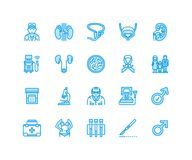 Urology vector flat line icons. Urologist, bladder, kidneys, adrenal glands, prostate. Linear medical pictograms with. Editable stroke for clinic, potency royalty free illustration