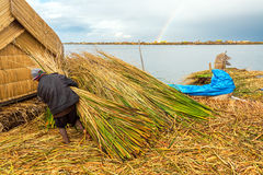 Uros Islands Worker Stock Photos