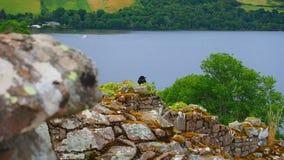 Urquhart Castle stock video footage