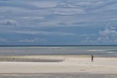 Urquoise热带玻利尼西亚天堂 免版税库存照片