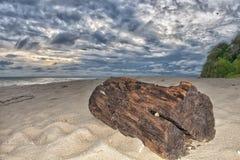 Τροπικός πολυνησιακός παράδεισος Urquoise Στοκ Εικόνες