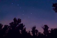 Ursa Major-constellatie royalty-vrije stock afbeelding