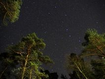 Big dipper stars on night sky over green forest stock photography