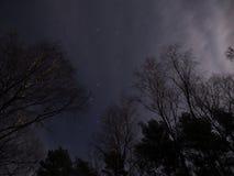 Ursa viktiga stjärnor Royaltyfria Foton