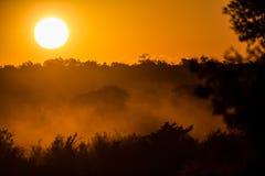 Ursnygg afrikansk solnedgång Arkivbilder