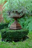 Ursnygg klassisk trädgårds- urna med växter & ormbunkar Arkivbild