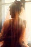 Ursnygg kvinna med den röda genomskinliga sjalen Royaltyfri Bild