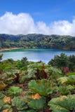 ursnygg lake Royaltyfria Bilder