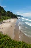 Ursnygg Oregon strand Arkivfoto