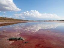 Ursnygg reflexion på klart vatten 3 Arkivbilder