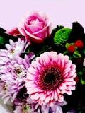 Ursnygg rosa blommabukett royaltyfri foto
