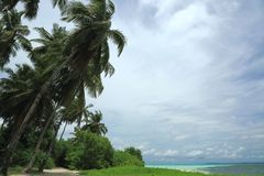 Ursnygg sikt av det naturliga tropiska landskapet Maldiverna Indiska oceanen Arkivfoton