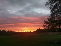 ursnygg solnedgång Royaltyfria Foton