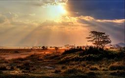 Ursnygg solnedgång med solstrålar i Afrika fotografering för bildbyråer