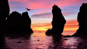Ursnygg soluppgång på havet Fotografering för Bildbyråer