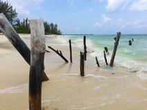 Ursnygg tropisk strand Royaltyfri Foto