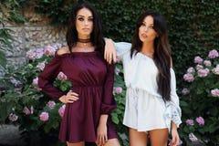 Ursnygga kvinnor med mörkt hår i eleganta klänningar Arkivbilder
