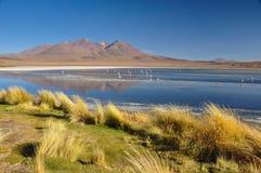 Ursnygga landskap av Sur Lipez, södra Bolivia Royaltyfri Fotografi
