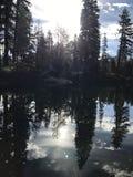 Ursnygga reflexioner på vatten Arkivbilder