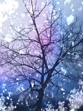 Ursnyggt färgrikt träd Royaltyfri Bild