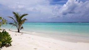 Ursnyggt färgrikt tropiskt landskap Maldiverna Indiska oceanen island maldivian Turkosvatten, blå himmel med vita moln för snö arkivfilmer