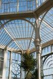 Ursnyggt gammalt växthus Royaltyfri Bild