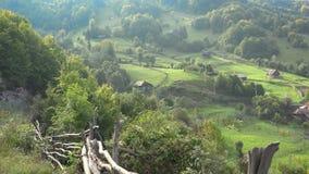 Ursnyggt lantligt berglandskap, trästaket på vårgräsplannaturen lager videofilmer