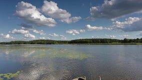 Ursnyggt naturlandskap p? en sommardag Gröna växter, spegelvattenyttersida och blå himmel med vita moln för snö arkivfilmer
