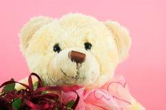 Urso 3 da peluche Imagens de Stock