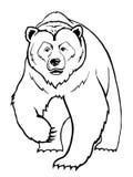 Urso Fotografia de Stock Royalty Free