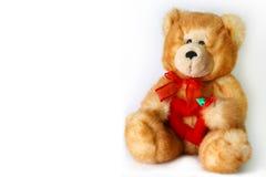 Urso bonito Imagem de Stock Royalty Free