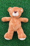 Urso bonito da peluche Foto de Stock Royalty Free