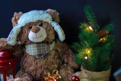 Urso bonito do brinquedo que guarda uma pata em uma lanterna vermelha em um fundo preto No quadro, você pode ver uma árvore de Na imagens de stock