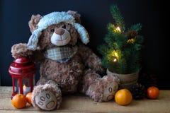 Urso bonito do brinquedo que guarda uma pata em uma lanterna vermelha em um fundo preto No quadro, você pode ver uma árvore de Na foto de stock royalty free