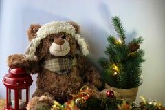 Urso bonito do brinquedo que guarda uma pata em uma lanterna vermelha em um fundo preto No quadro, você pode ver uma árvore de Na foto de stock