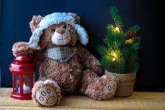 Urso bonito do brinquedo que guarda uma pata em uma lanterna vermelha em um fundo preto No quadro, você pode ver uma árvore de Na fotos de stock