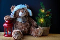 Urso bonito do brinquedo que guarda uma pata em uma lanterna vermelha em um fundo preto No quadro, você pode ver uma árvore de Na imagem de stock