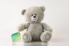 Urso com cartão Fotografia de Stock Royalty Free