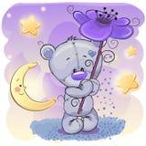 Urso com flor Foto de Stock