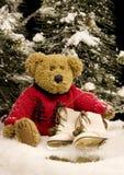 Urso com patins de gelo - vertical da peluche Foto de Stock Royalty Free