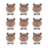 Urso com vidros Foto de Stock Royalty Free