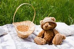 Urso da cesta e de peluche em uma cobertura Foto de Stock Royalty Free