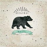 Urso da etiqueta do vintage Projeto para o t-shirt Imagem de Stock Royalty Free