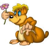 Urso da peluche com flor Foto de Stock Royalty Free